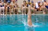 Gallery: Girls Swim Olympia @ Sumner